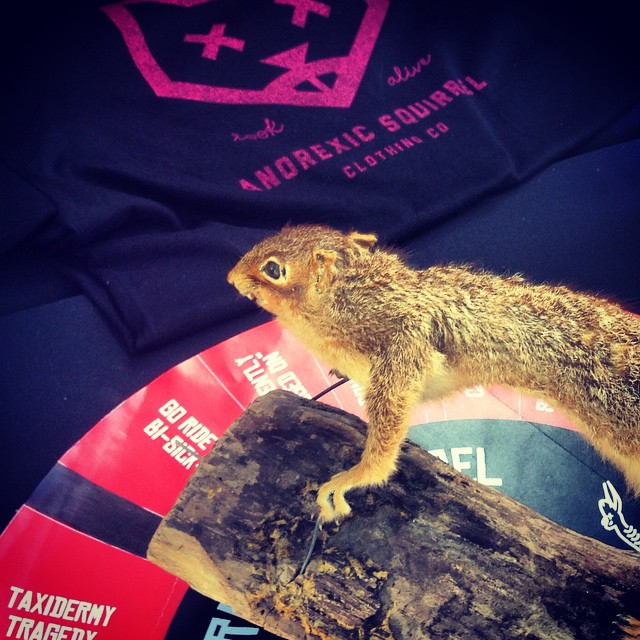 Day 2 at the festival, everything is $15 today! Come spin and shoot the squirrel!