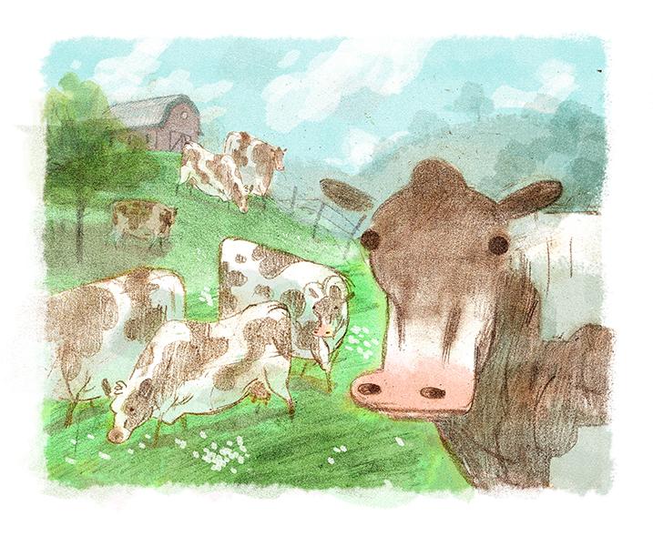 cow_graze