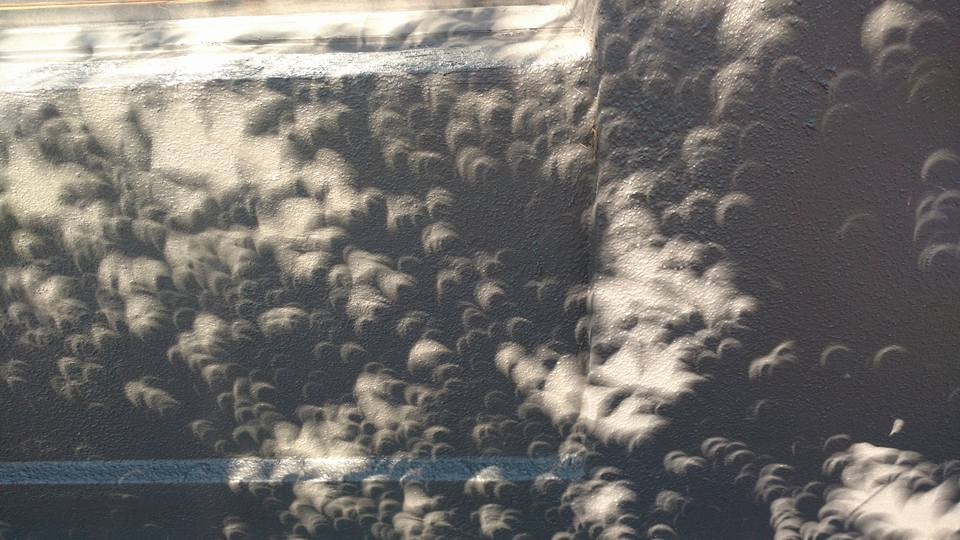 HouseSpecial_eclipse_shadows.jpg