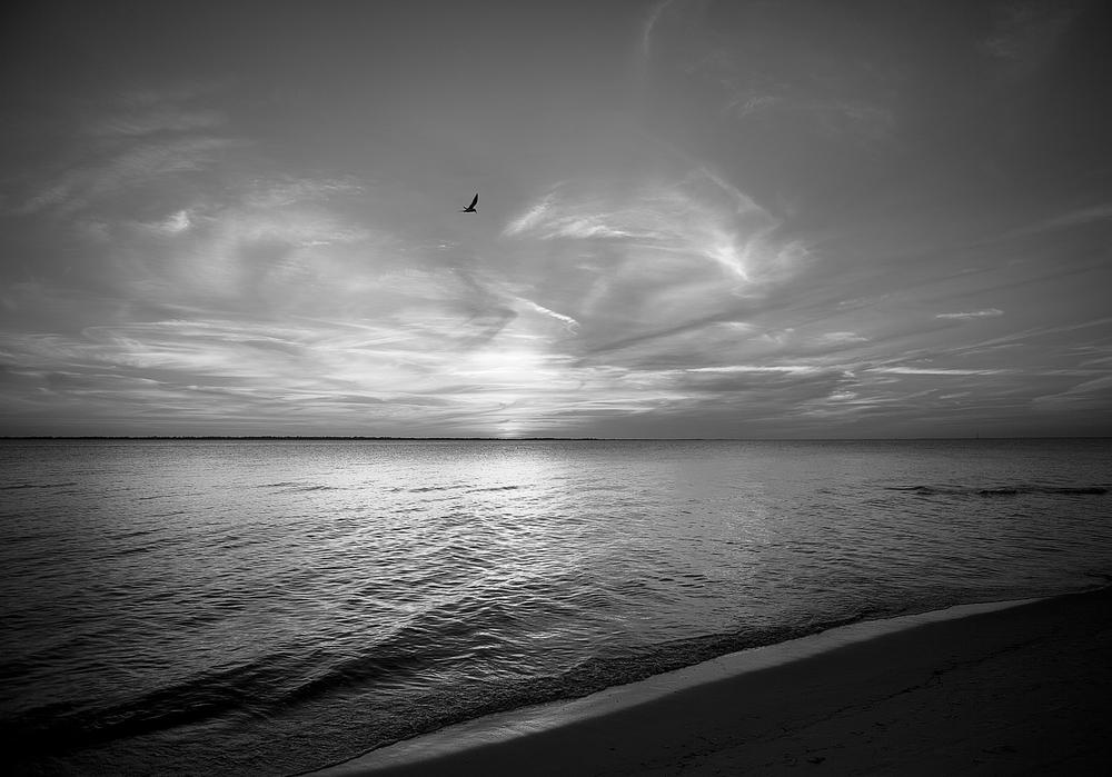 Beach-5957.jpg