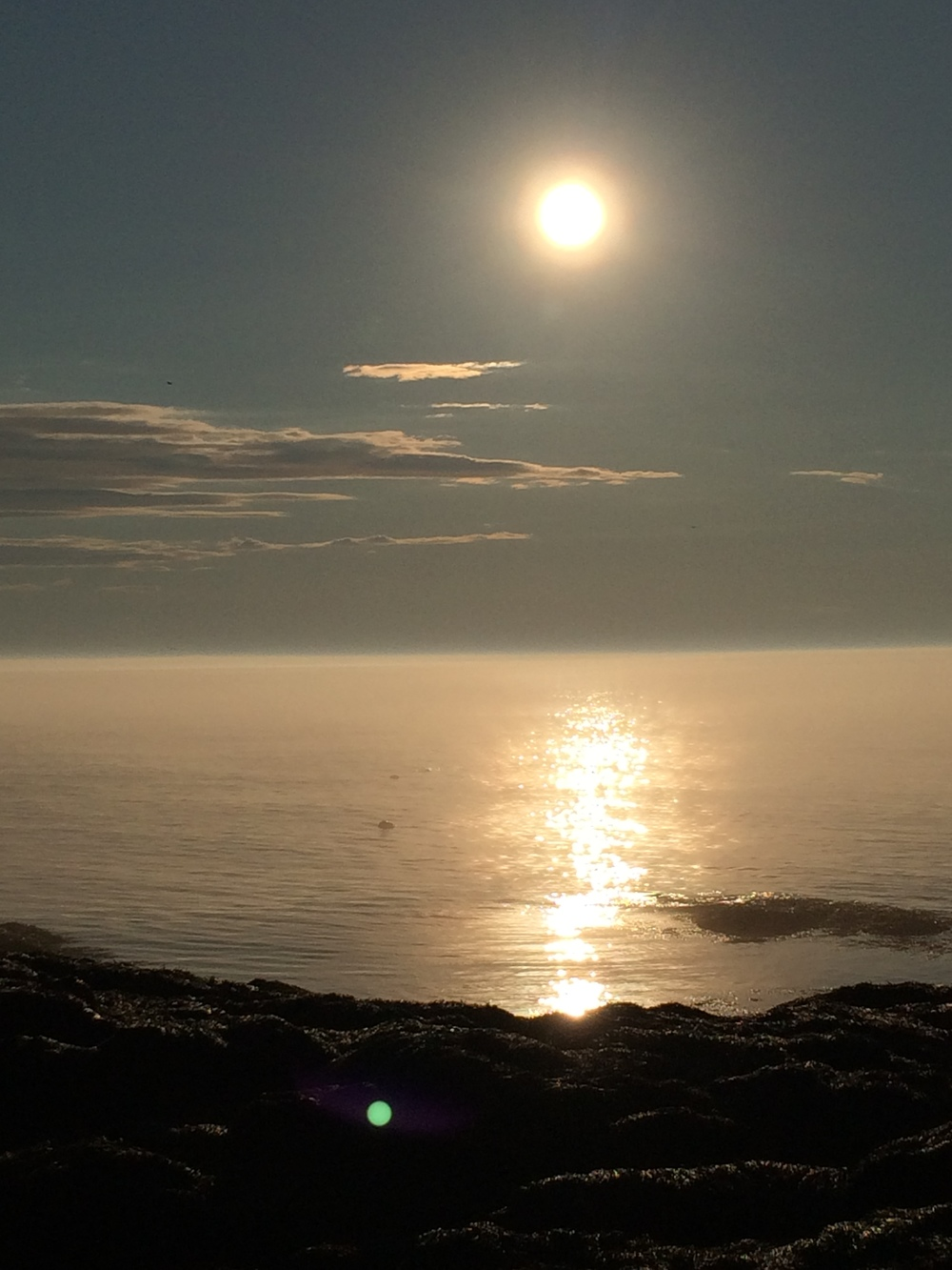 Sunset with the seals (Brier Island, NS)