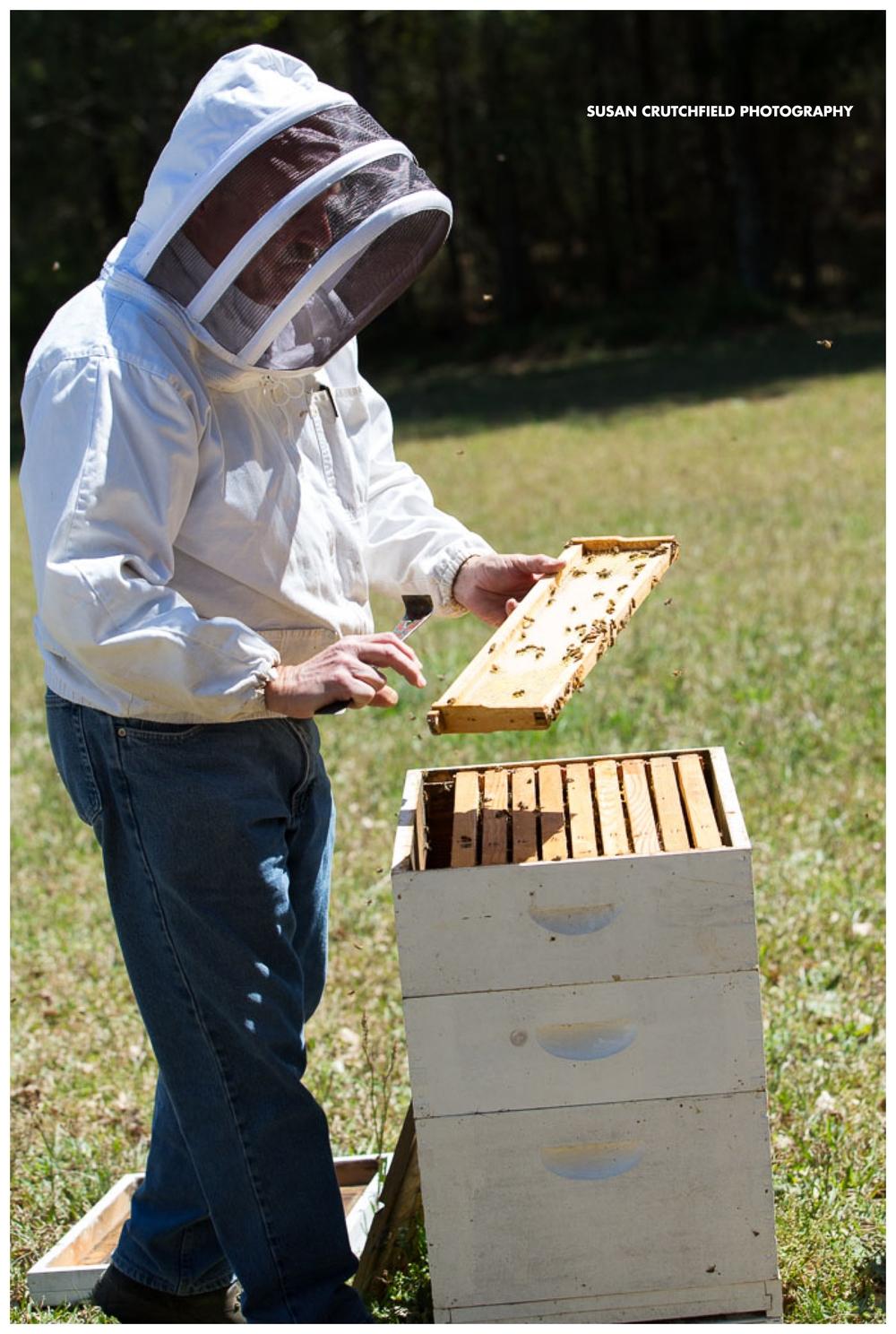 Steven Page Beekeeper