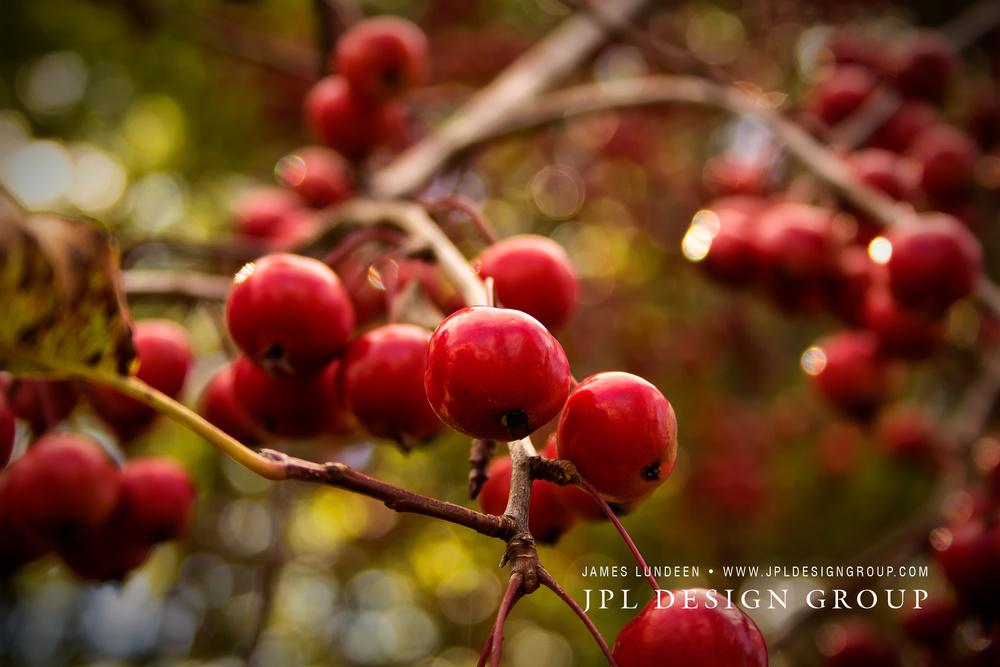IMG_1583Facebook.jpg