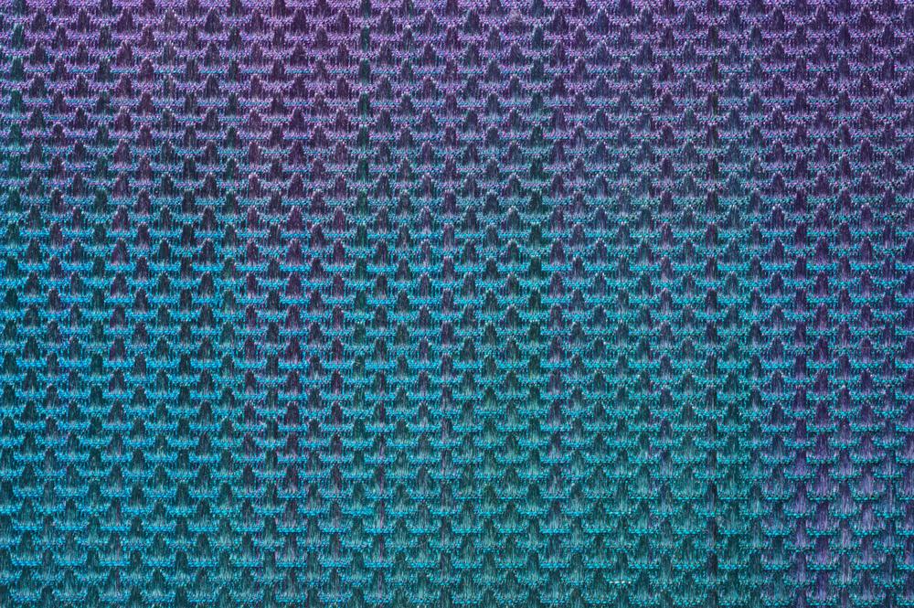 Detail - Violet Saberwing