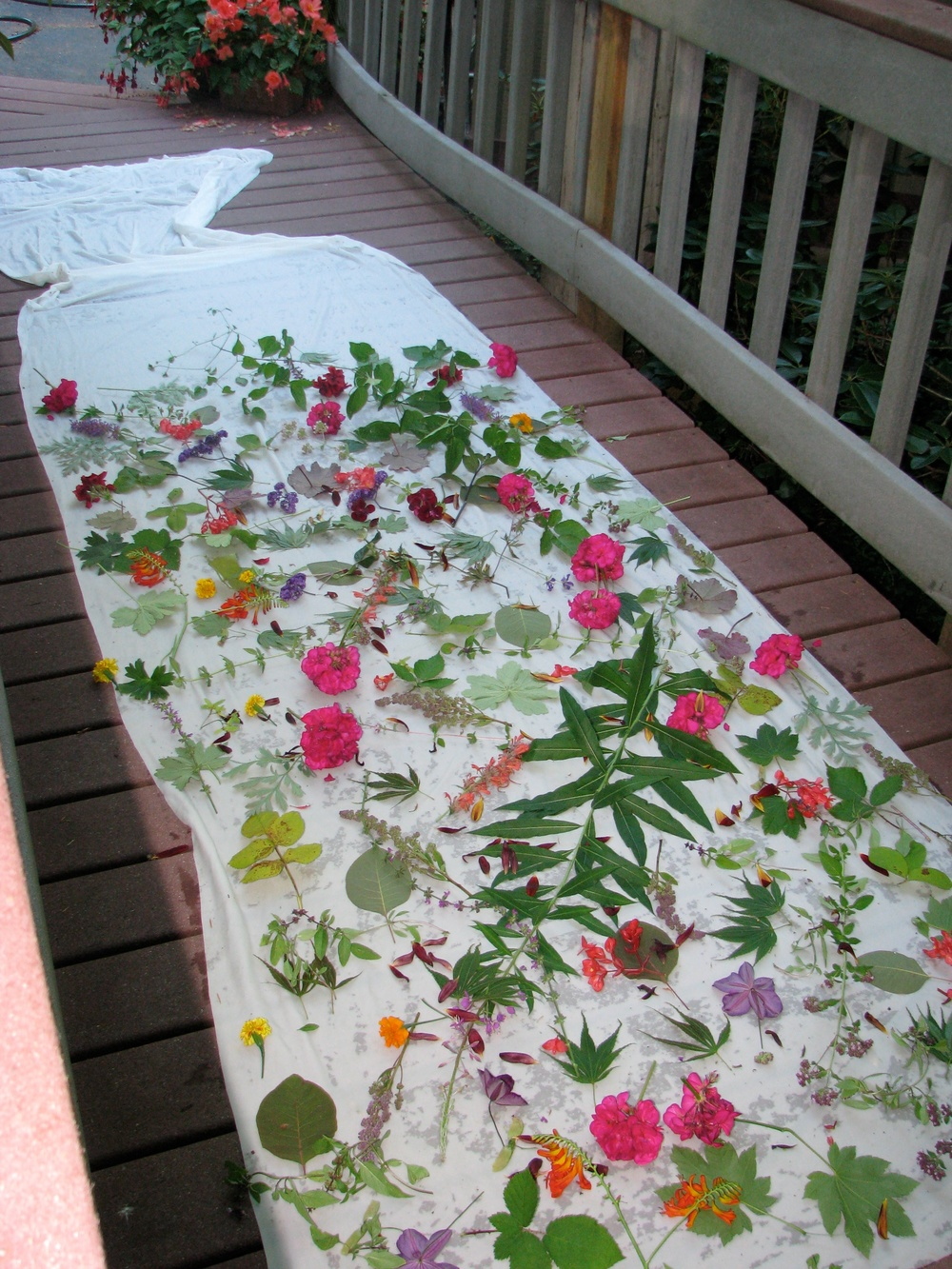 Leaves and Flowers laid out and ready to bundle