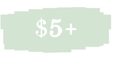 $5 Donation Level