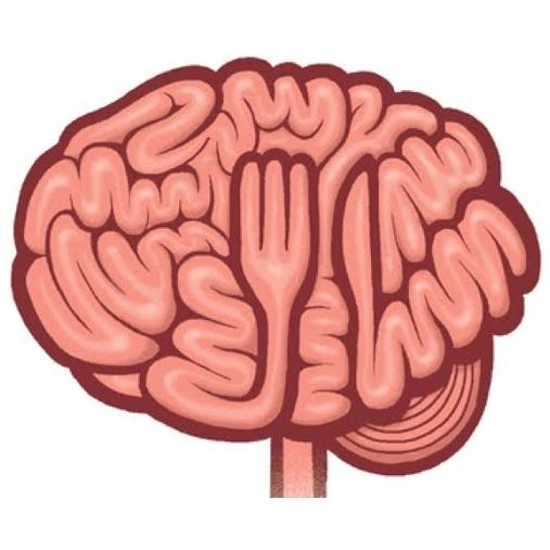 brain11.jpg