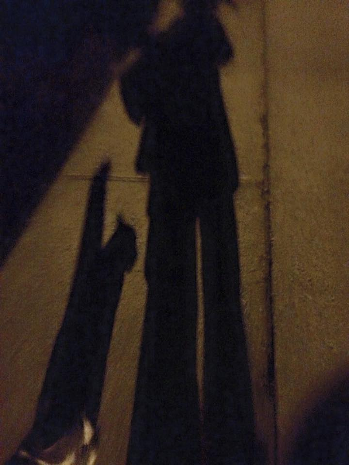A random kitty walking with me to the hill to watch meteors