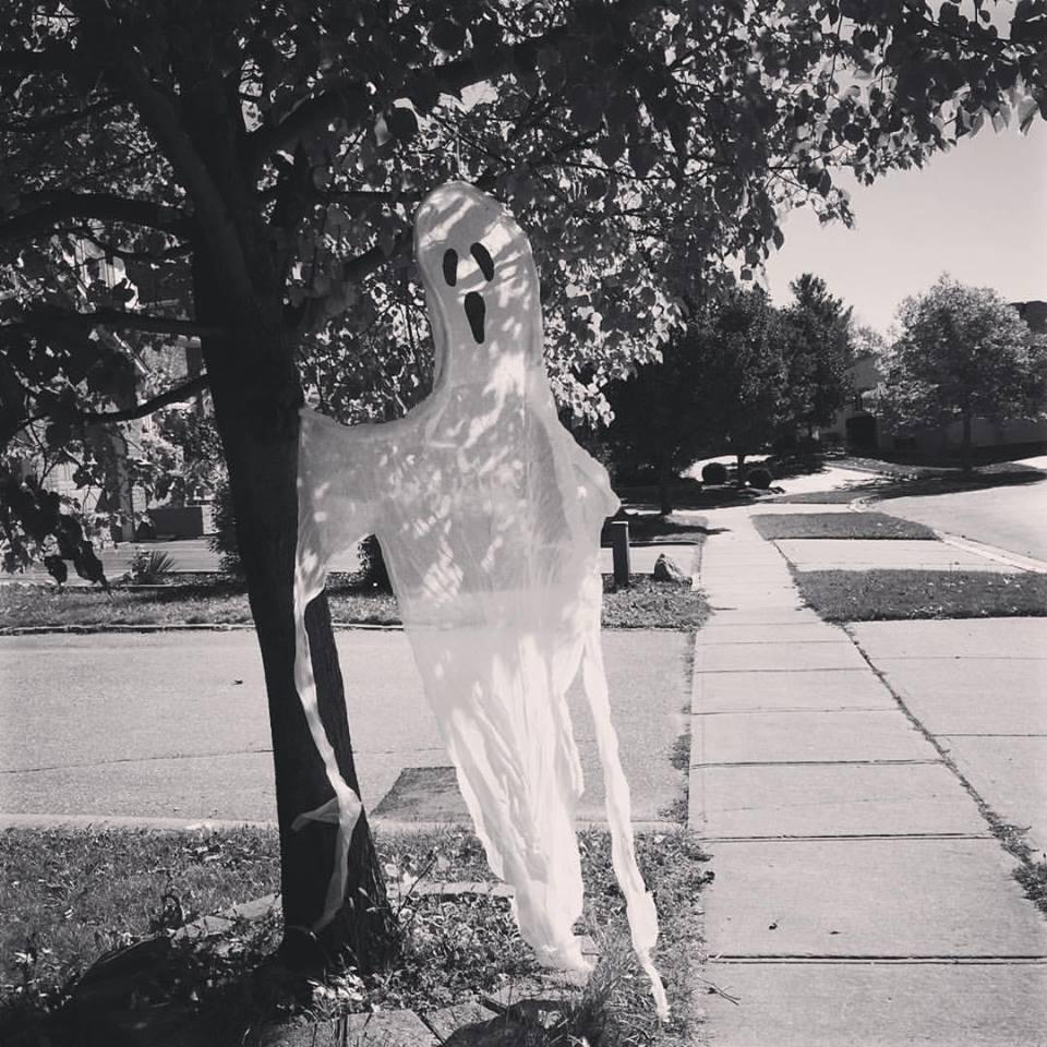 A spooky treasure on my walk