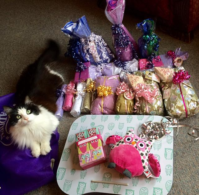 Chloe hanging out with Paige's beautiful wrapping + the owl gifts from my girl