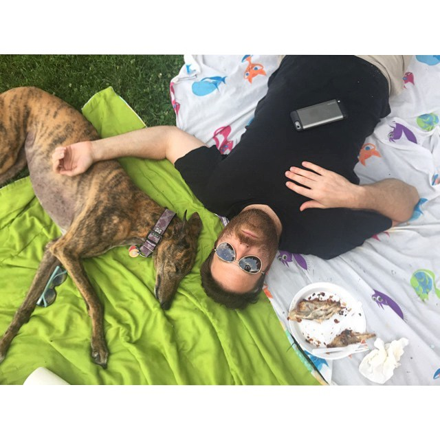 I swear this wasn't posed, I'm a documentarian! They are really asleep. #picnic #aftermath #sunglasses #friedchicken #greyhoundsofig #adoptedgreyhound #love #aboyandhisdog  (at Nethermead, Prospect Park)