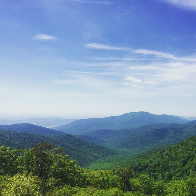 #blueridgemountains #shenandoah #latergram #skylinedrive #virginia (at Skyline Drive)