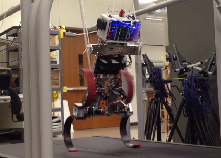 Biped Robot   (Purdue University)