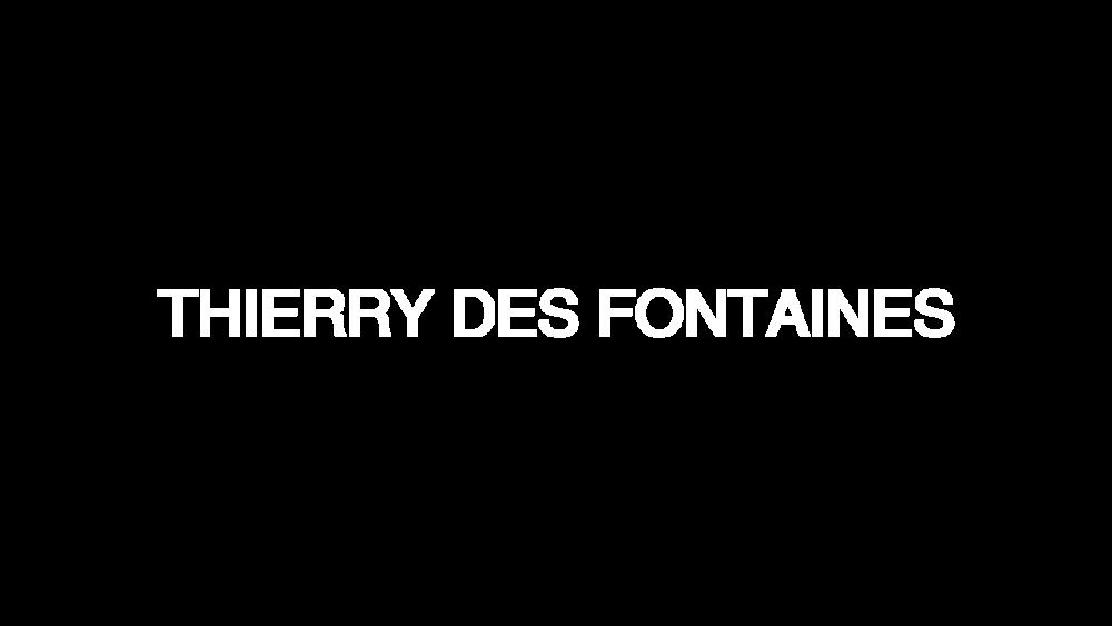 TDF - Logo.png