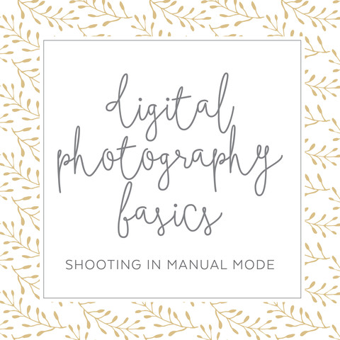 Digital Photography Basics by Erin Lindsey Images
