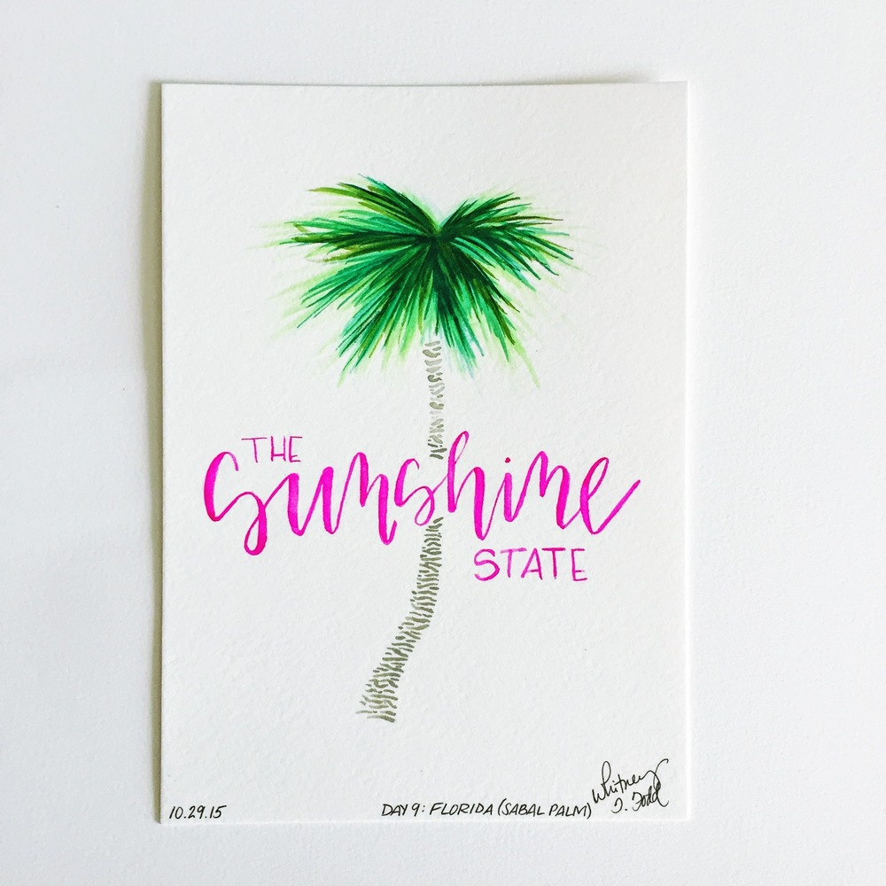 Day 9: Florida - The Sunshine State & Sabal Palm // 50 Day State-themed Illustration and Design Challenge via Jitney's Journeys