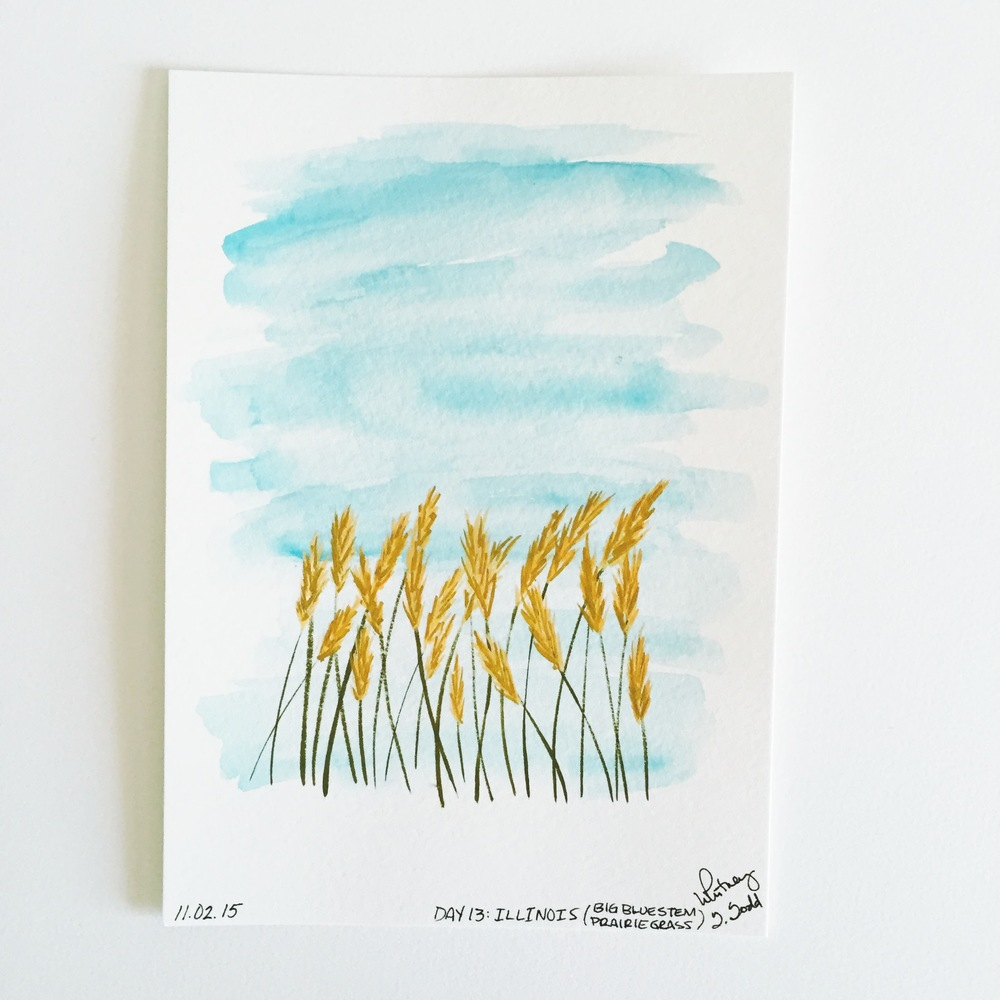 50 Day State-themed Design Challenge via Jitney's Journeys // Illustration and Gouache Paintings by Whitney Todd [Illinois - Big Bluestem Prairie Grass]