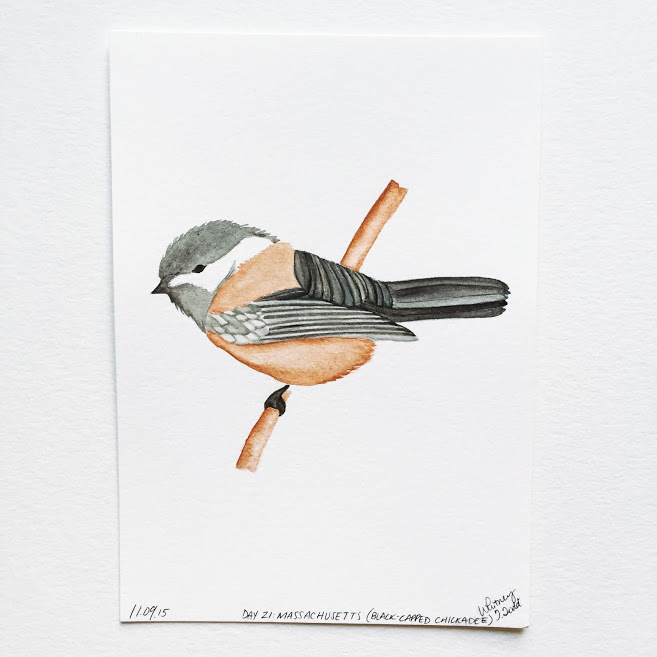 50 Day State-themed Design Challenge via Jitney's Journeys // Illustration and Gouache Paintings by Whitney Todd [Massachusetts - Black-capped Chickadee]