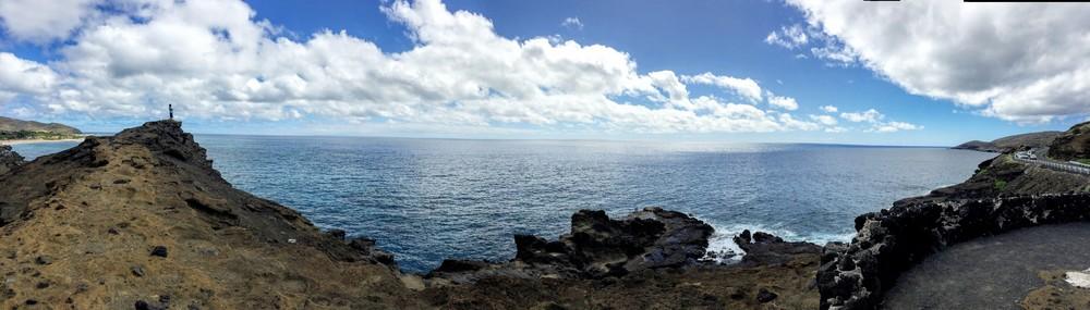 Whale Watching on Oahu // via Jitney's Journeys