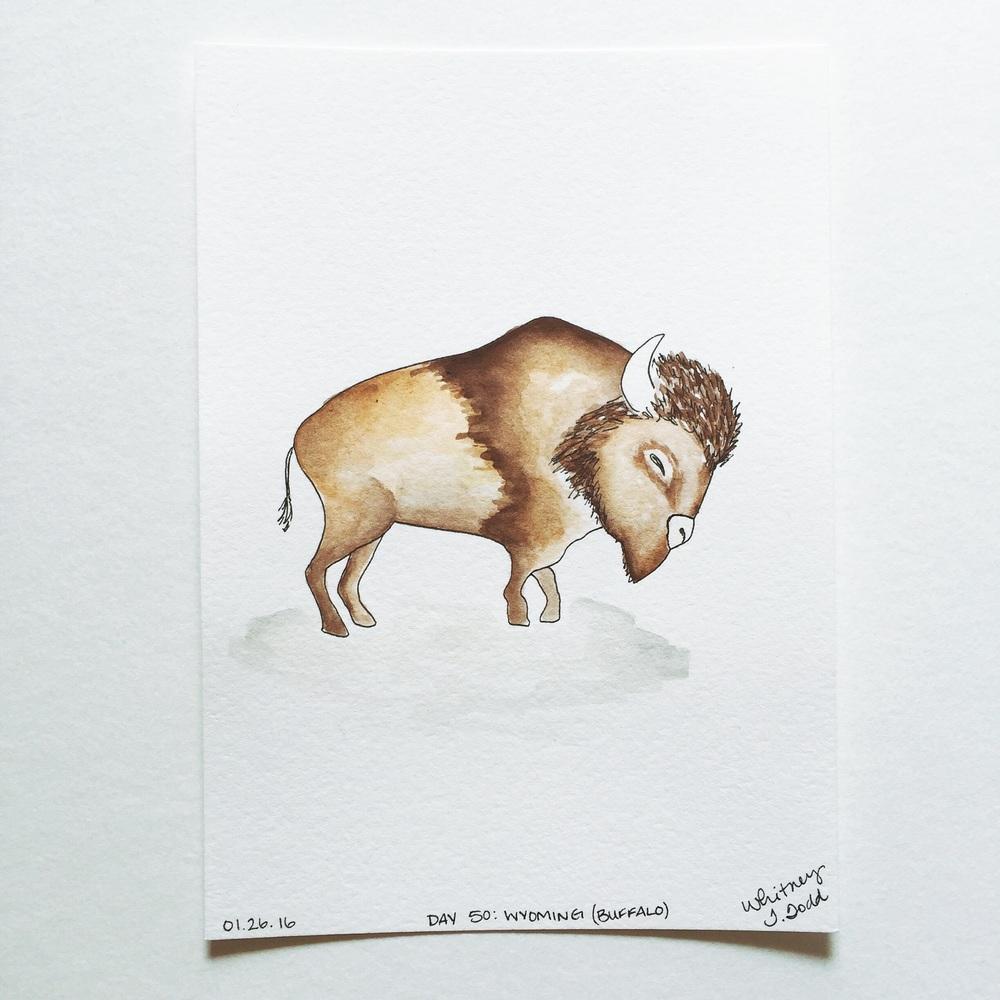 Illustration Buffalo of Wyoming by Whitney Todd // via Jitney's Journeys