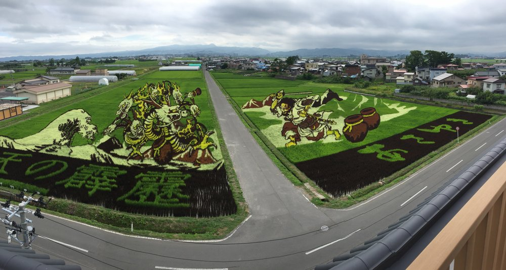 Rice Paddy Fields in Japan via Jitneys