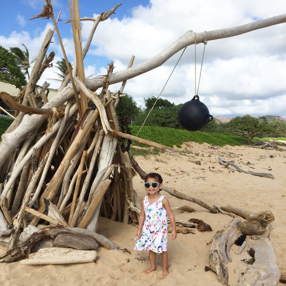 Legit beach hut made out of driftwood in Hawaii