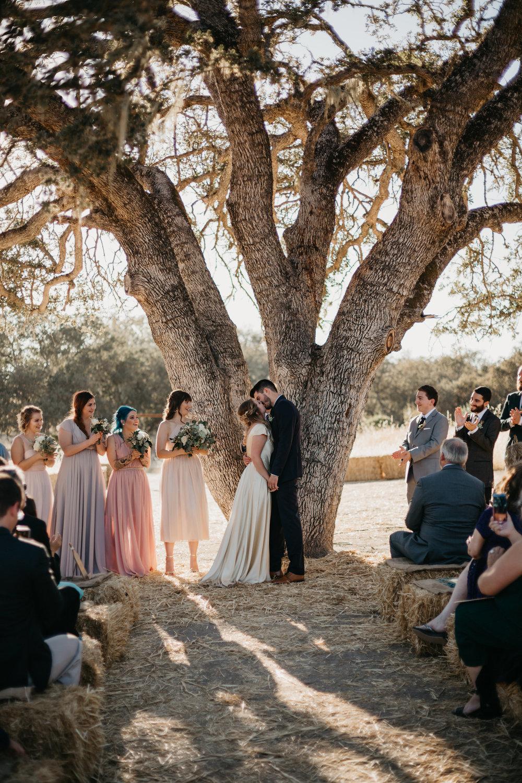 rose_wedding-421.jpg