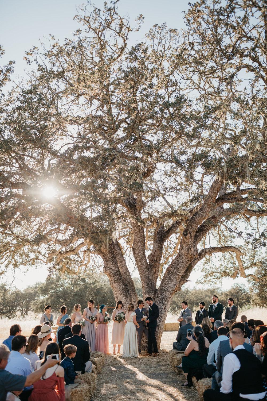rose_wedding-414.jpg