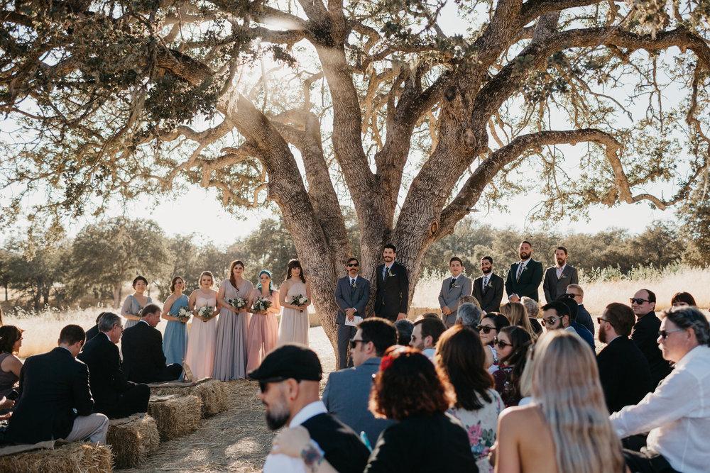 rose_wedding-386.jpg