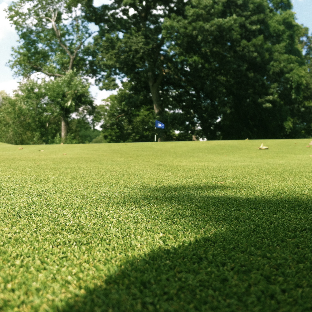Rolling green on 13