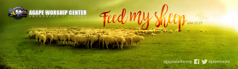 feed-my-sheep.png