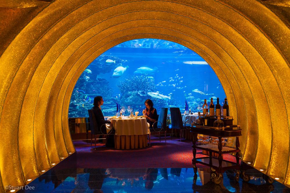 Dubai City, Dubai, UAE.