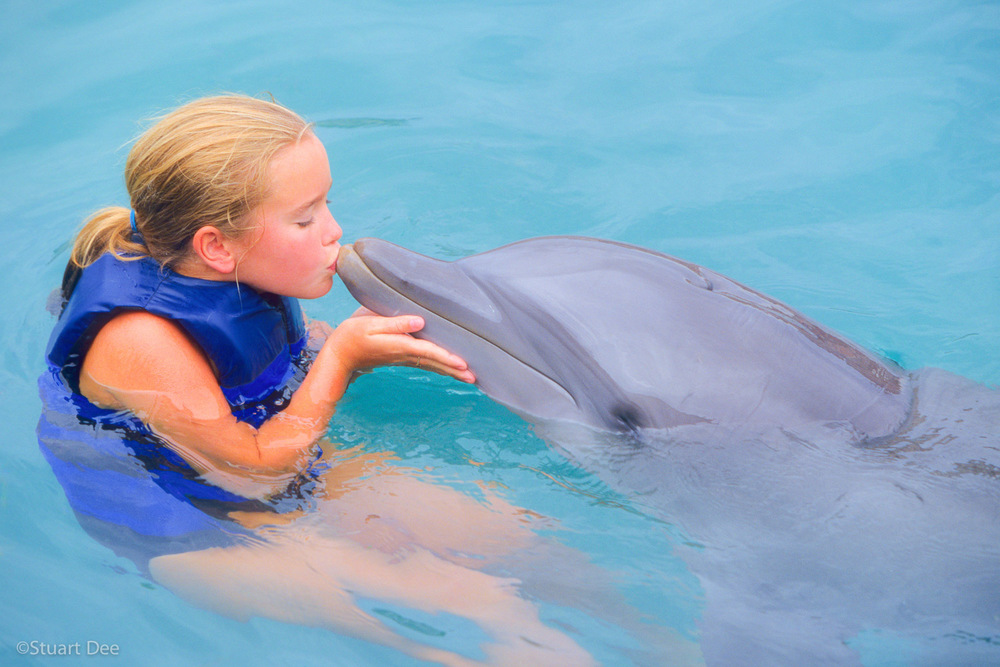 Young girl kissing dolphin, Bermuda