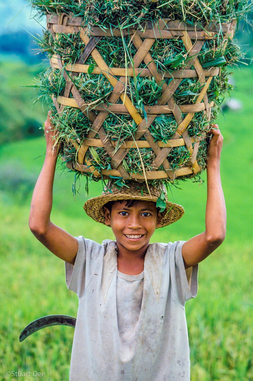 Farm Worker, Bali, Indonesia