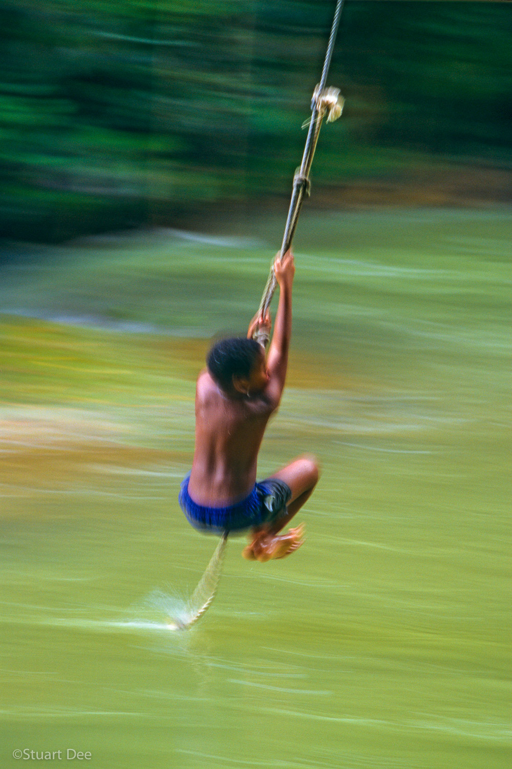 Jamaican boy swinging on a rope over a river.