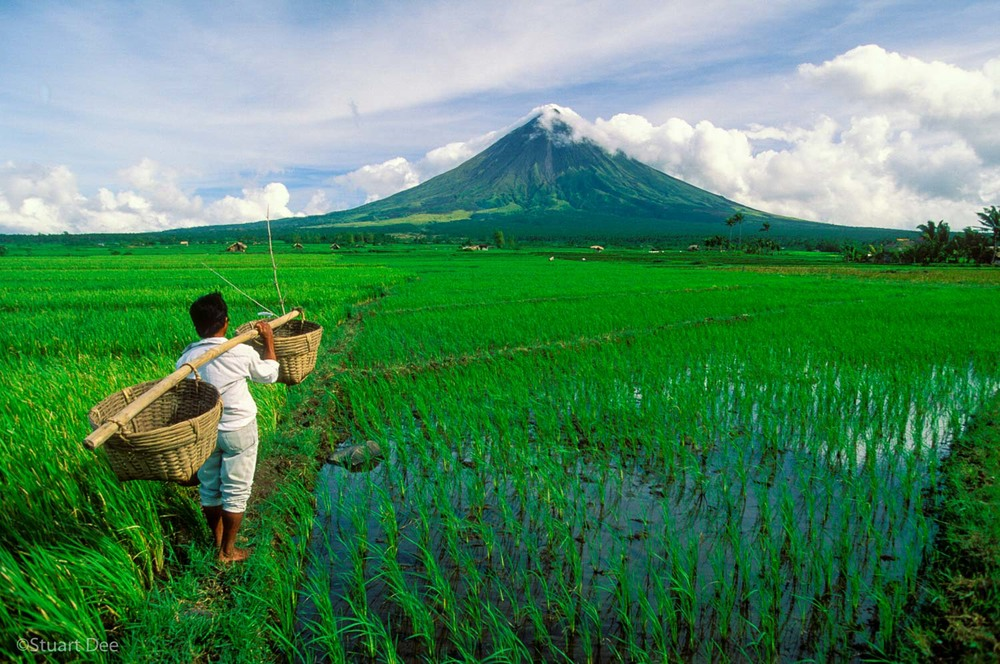 Mayon Volcano And Farmer, Albay, Philippines