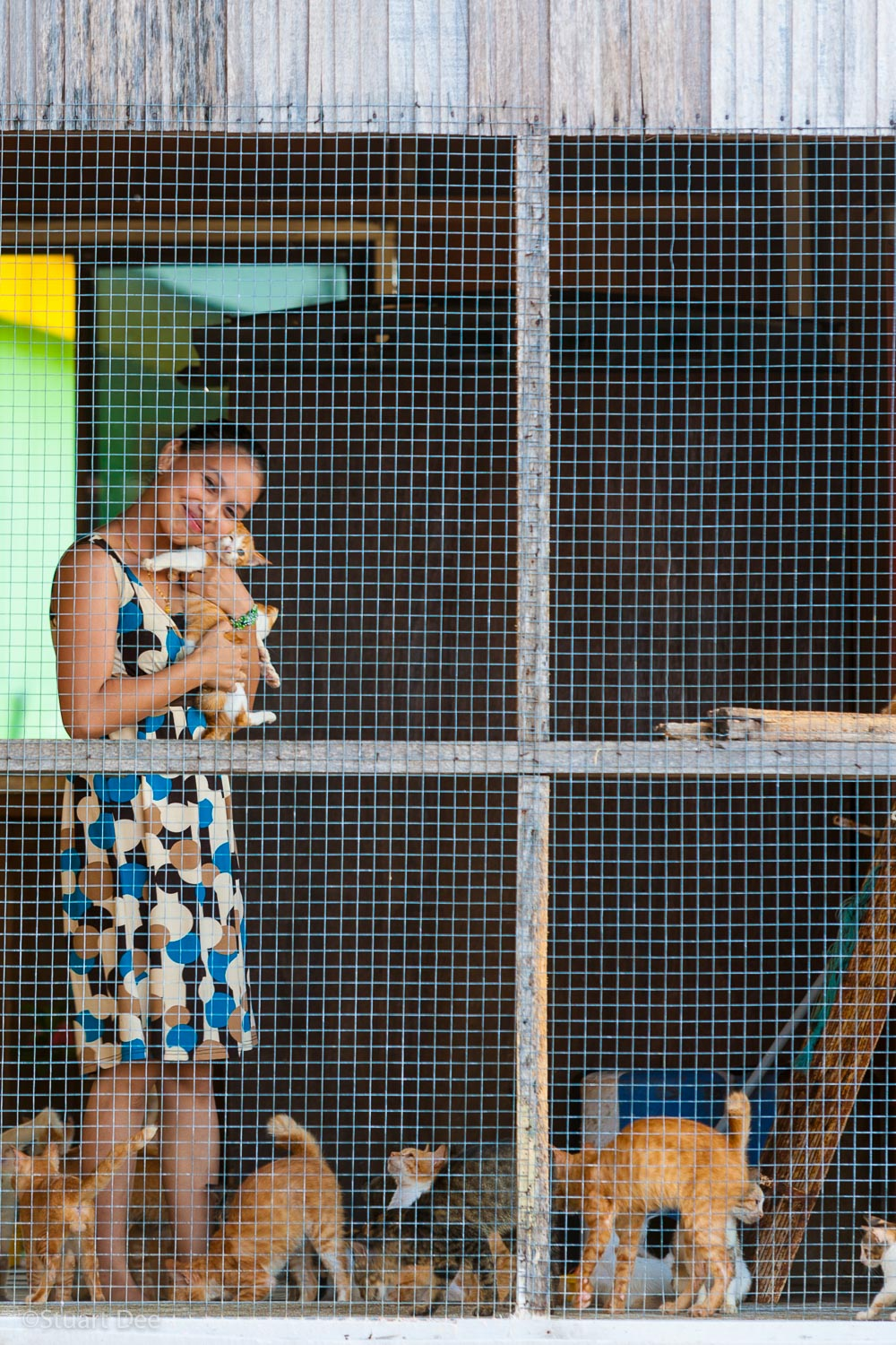 Woman with her pet cats, Buli Sim Sim water village, Sandakan, Sabah, Malaysia. Sandakan is the second largest city in Sabah (after KK) and is a gateway to many ecotourism destinations.