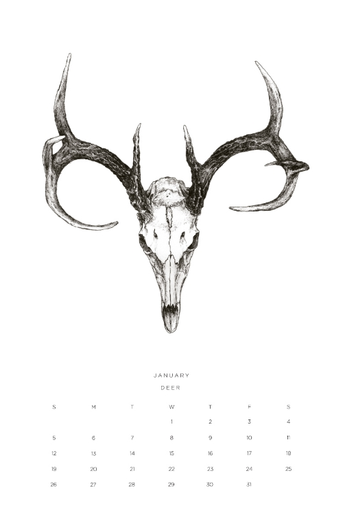 Once upon a beast 2014 Calendar by   Hillary Kupish.
