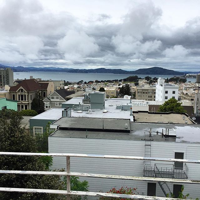 #nbd views from a friend's #SF apartment #sanfrancisco #mysf #mysanfrancisco #visitsf #hirise