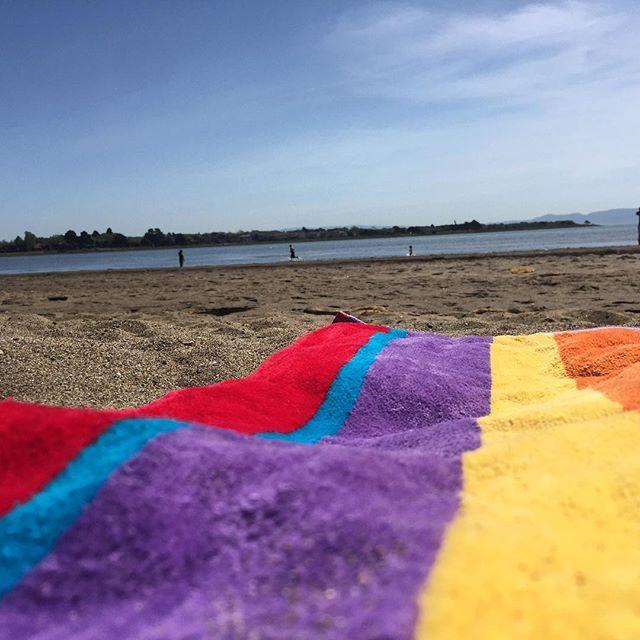 We don't hate Mondays in Alameda #eastbay #beachday #sun #mondays #newweek #gooutside #outdoors #alameda