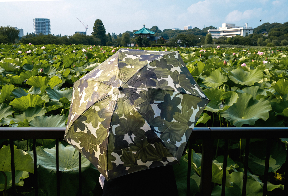 ueno-park_14713424435_o.jpg