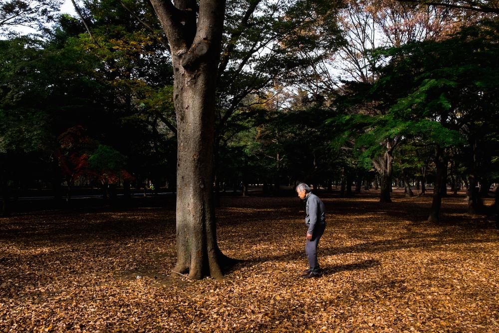 yoyogi-park_15622201849_o.jpg