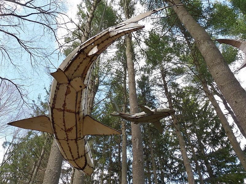 Pine sharks.jpg