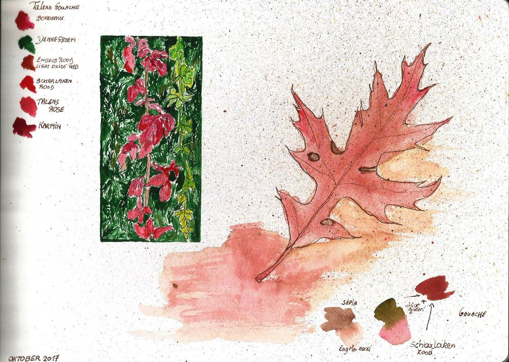 Herfstbladeren, leaf color study from the sketchbook of Debora Missoorten, 2017