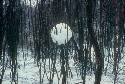 andy_goldsworthy_06.jpg
