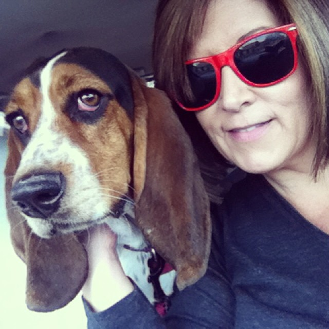 It's a park day Yo! #waffles #bassethound #dogsinaustin–posted by karensinaustin on Instagram