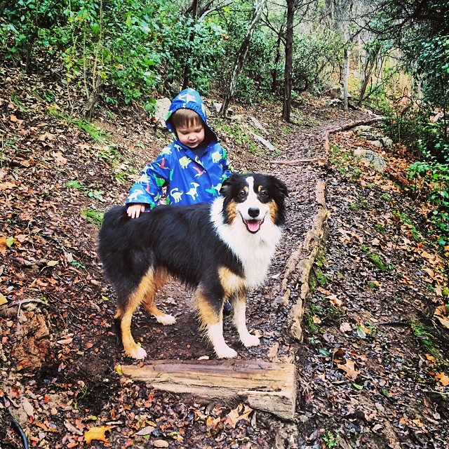 "This dog is the poster child for everything. Today she says ""take the time to make a new friend"" #thenakeddog #austin #hiking #boarding #training #atx #dogsofaustin #dogsofinstagram #aussie–posted by thenakeddog on Instagram"
