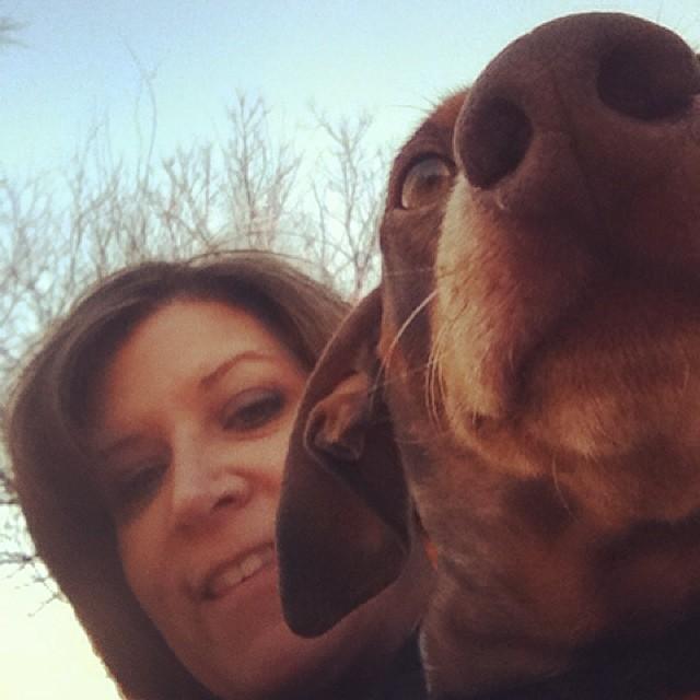 I photo bombed Reesie's selfie #dachshund #austintx–posted by karensinaustin on Instagram