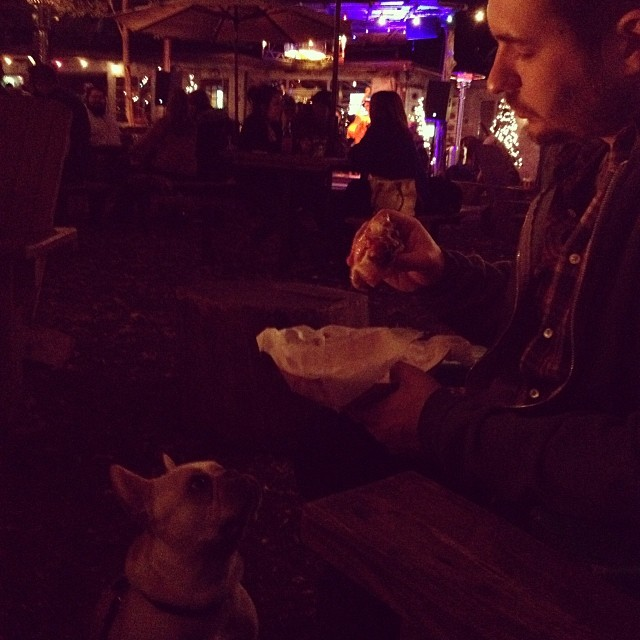 🌀you will give me that piece of hamburger, daddy 🌀…#buhi #bulldogs #atxfrenchies #dogslife #frenchies #frenchbullies #instafrenchie #ilovemydog #moontowersaloon–posted by handsomethepup on Instagram
