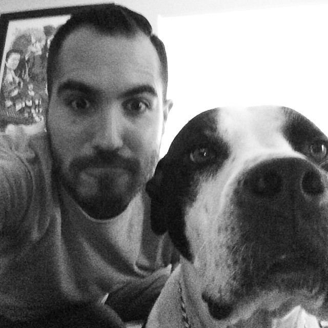 #twins #pitbull/#greatdane #lazydog –posted by jeremyelcrossfitter on Instagram